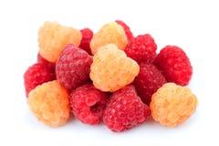 鲜美美丽的莓 免版税库存图片