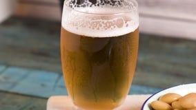 鲜美羽扇豆和杯啤酒 影视素材