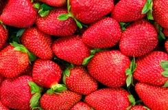 鲜美背景危险的草莓 免版税库存照片