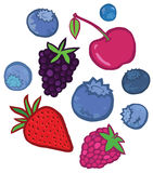 鲜美莓果 向量例证