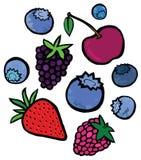 鲜美莓果 皇族释放例证