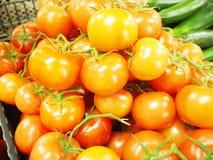 鲜美蕃茄 免版税库存照片