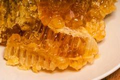 鲜美蜂蜜 库存图片