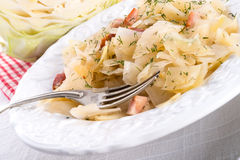 鲜美被炖的圆白菜菜 图库摄影