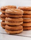 鲜美被烘烤的曲奇饼 库存照片