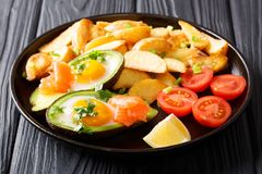 鲜美食物crockpot被烘烤的鲕梨充塞用鸡蛋和三文鱼, 免版税库存图片