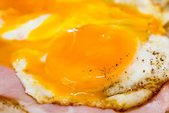 鲜美鸡蛋用火腿 免版税库存图片