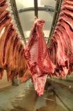 鲜肉在一个冷盘工厂 免版税库存图片