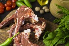 鲜肉蔬菜 库存照片
