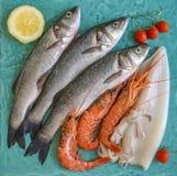 鲜鱼、虾和乌贼蓝色大理石表面上 免版税库存图片