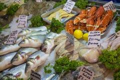 鲜鱼和海鲜在冰 库存图片