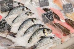 鲜鱼和海鲜在超级市场 库存图片
