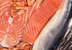 鲜鱼和虾 免版税库存图片