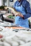 鲜鱼和蛤蜊由fishdealer presentated 库存照片