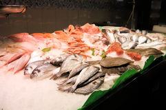 鲜鱼在市场巴塞罗那上 库存照片