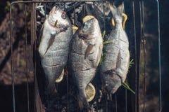 鲜鱼用在栅格烤肉的柠檬在庭院在夏天为rost prepaired 免版税库存图片