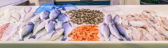鲜鱼被显示在圣阿古斯丁地方市场上的摊位  图库摄影
