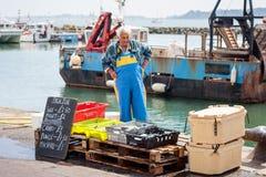 鲜鱼销售 库存照片