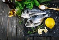 鲜鱼dorado顶视图辣草本 库存照片