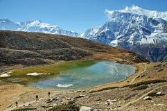 鲜绿色山湖在尼泊尔 免版税图库摄影