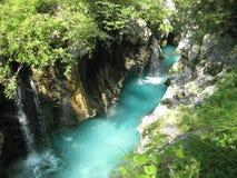 鲜绿色河 库存图片
