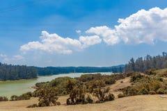 鲜绿色湖宽看法有美丽的天空的,发辫在背景中,乌塔卡蒙德,印度, 2016年8月19日 免版税图库摄影