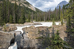 鲜绿色湖自然桥梁 免版税库存照片