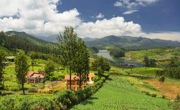 鲜绿色湖, Nilgiris乌塔卡蒙德 库存图片