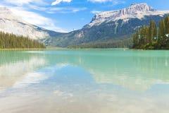 鲜绿色湖Yoho国家公园加拿大 免版税库存照片