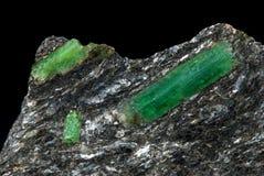 鲜绿色珠宝 免版税库存图片