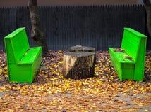 鲜绿色的公园长木凳在与五颜六色的叶子的一秋天秋天天在长凳附近的地面上 库存图片