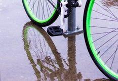鲜绿色的自行车车轮和反射 图库摄影