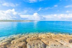 鲜绿色礁石和海  库存照片