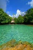 鲜绿色水池4 免版税库存图片