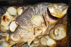 鲤鱼厨师烤的鱼平板炉 免版税库存照片