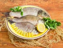 鲤鱼和crucians为烹调在盘做准备 库存图片