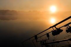 鲤鱼钓鱼竿有薄雾的湖法国 免版税库存照片