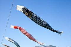 鲤鱼飘带 库存图片