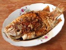 鲤鱼食物 库存照片