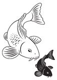 鲤鱼鱼koi装饰物池塘 库存照片