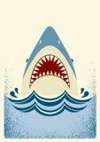 鲨鱼下颌 抽象颜色鱼例证向量 免版税库存图片