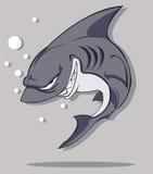 鲨鱼传染媒介 库存照片