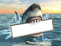 鲨鱼做广告 免版税库存照片