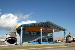 鲨鱼存储 库存照片