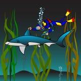 鲨鱼接种 免版税库存图片