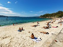 鲨鱼海滩,尼尔森公园,横谷,悉尼,澳大利亚 免版税库存照片