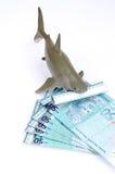 鲨鱼玩具和金钱 免版税库存照片