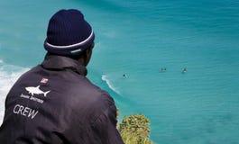 鲨鱼监视人,开普敦 免版税库存照片