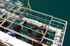 鲨鱼笼子 免版税图库摄影