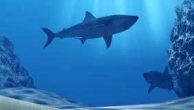 鲨鱼群水下与太阳光芒和石头在深蓝色海 免版税库存图片